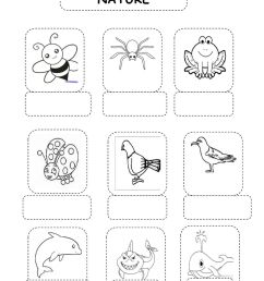 Animals online exercise for 3rd grade [ 1413 x 1000 Pixel ]