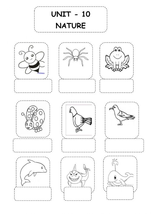small resolution of Animals online exercise for 3rd grade
