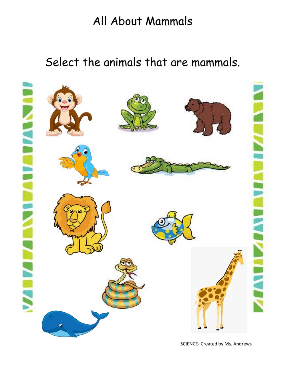 hight resolution of Mammals interactive exercise