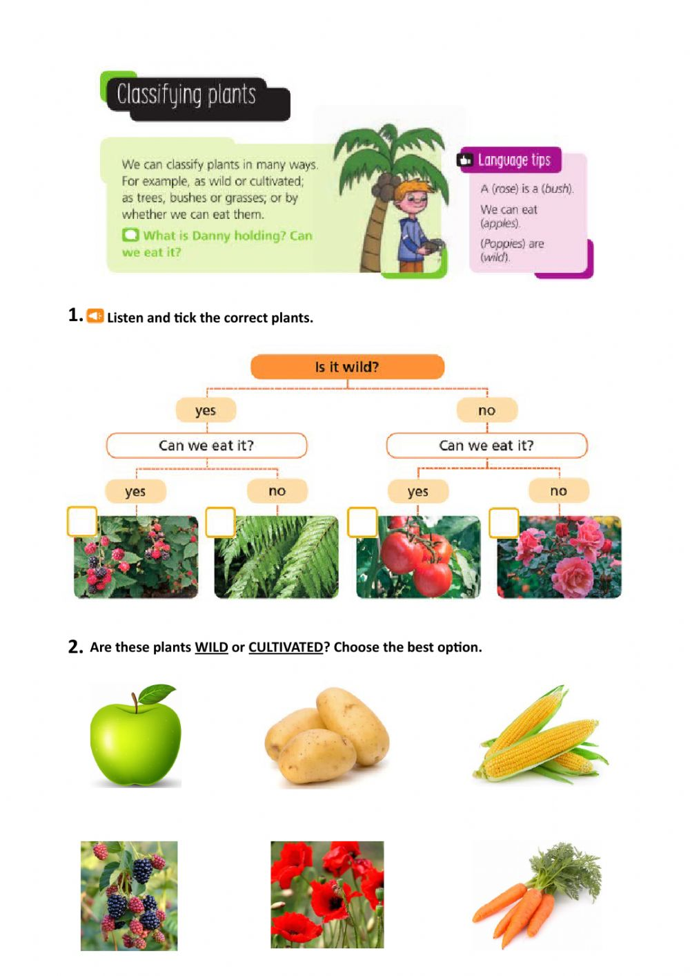 hight resolution of Classifying plants worksheet