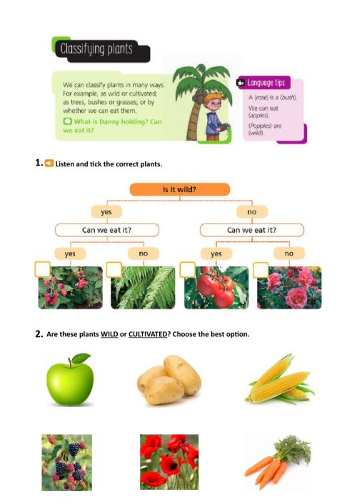 small resolution of Classifying plants worksheet