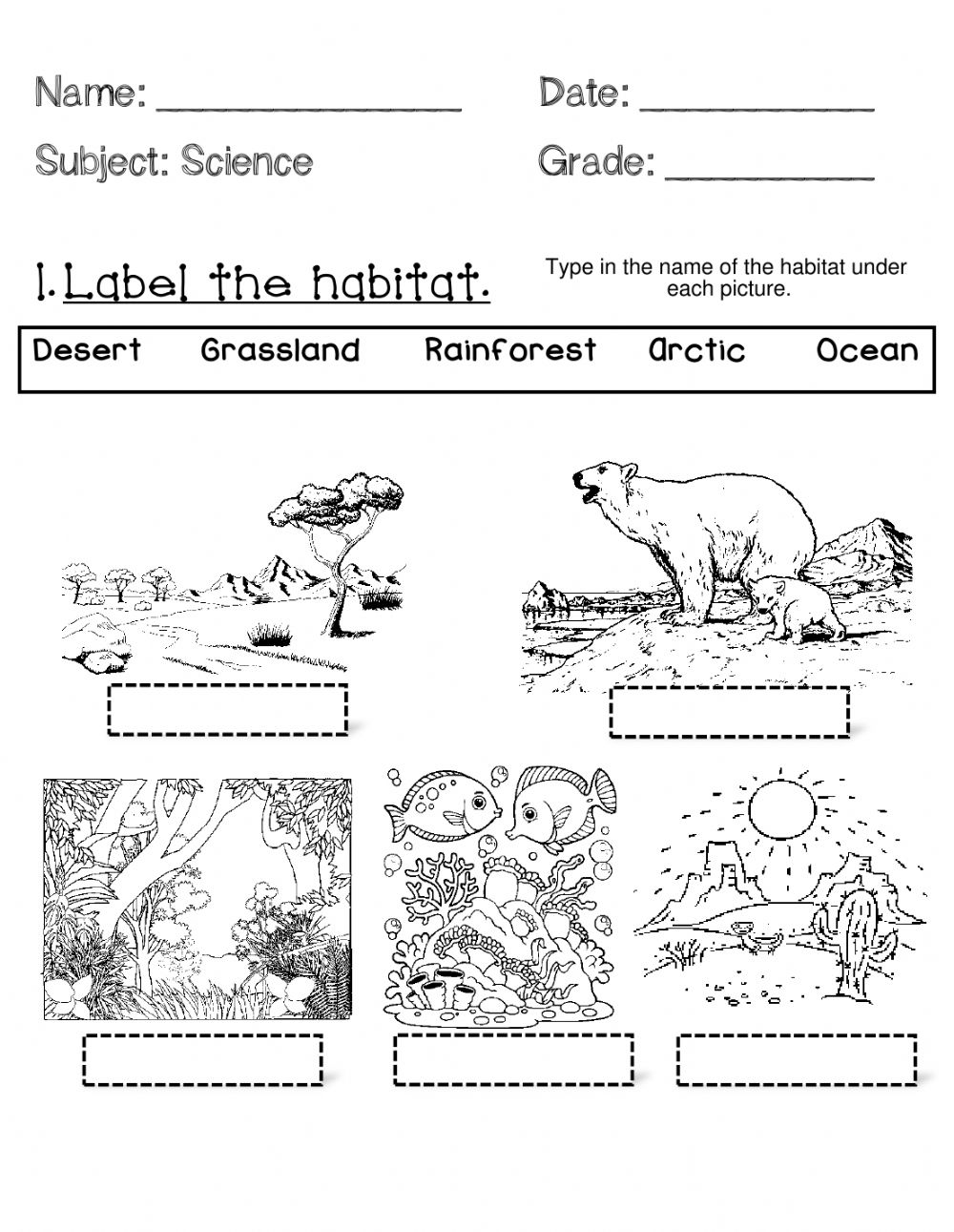 medium resolution of Animal Habitats- Wednesday worksheet