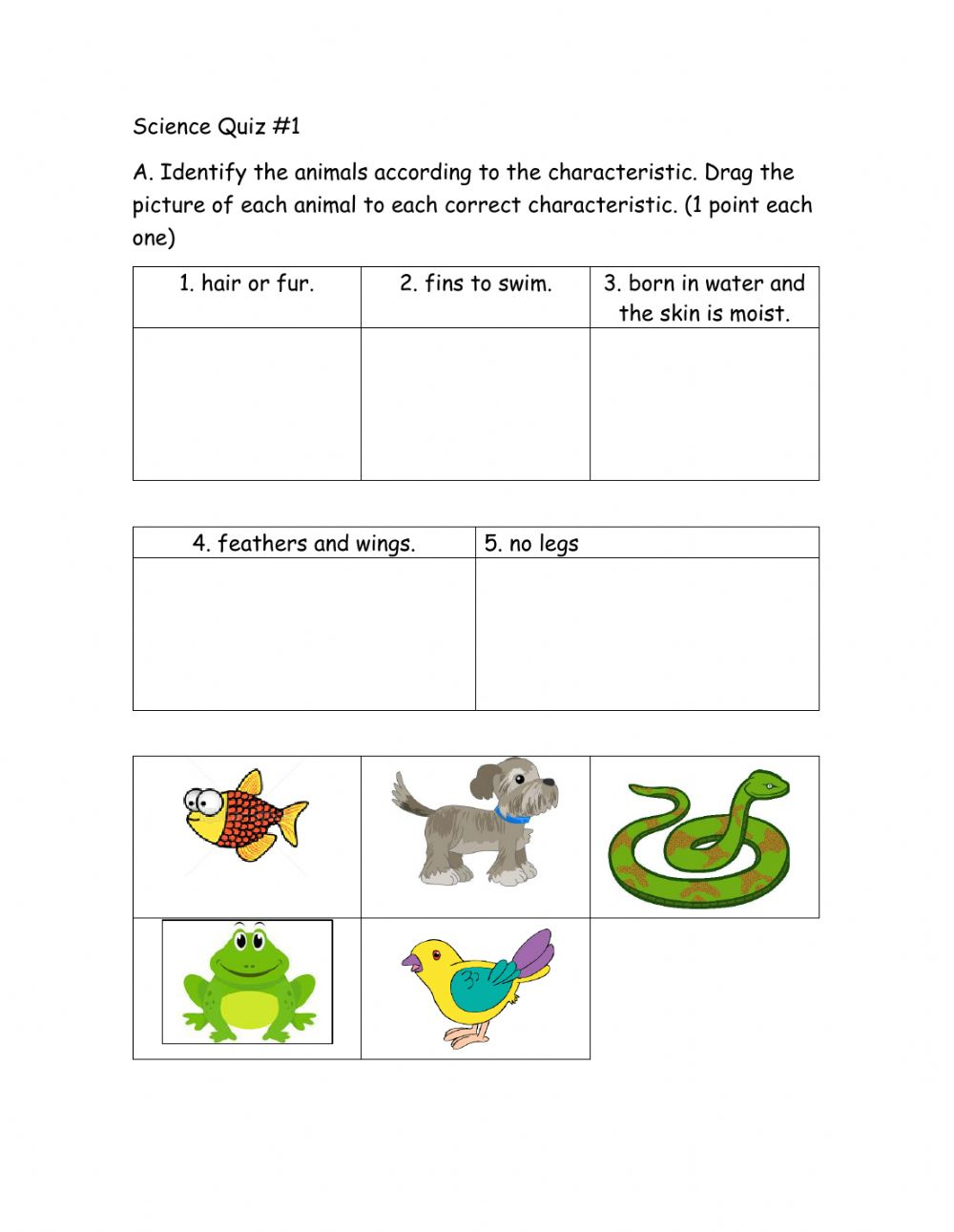 medium resolution of Kinds of Animals worksheet