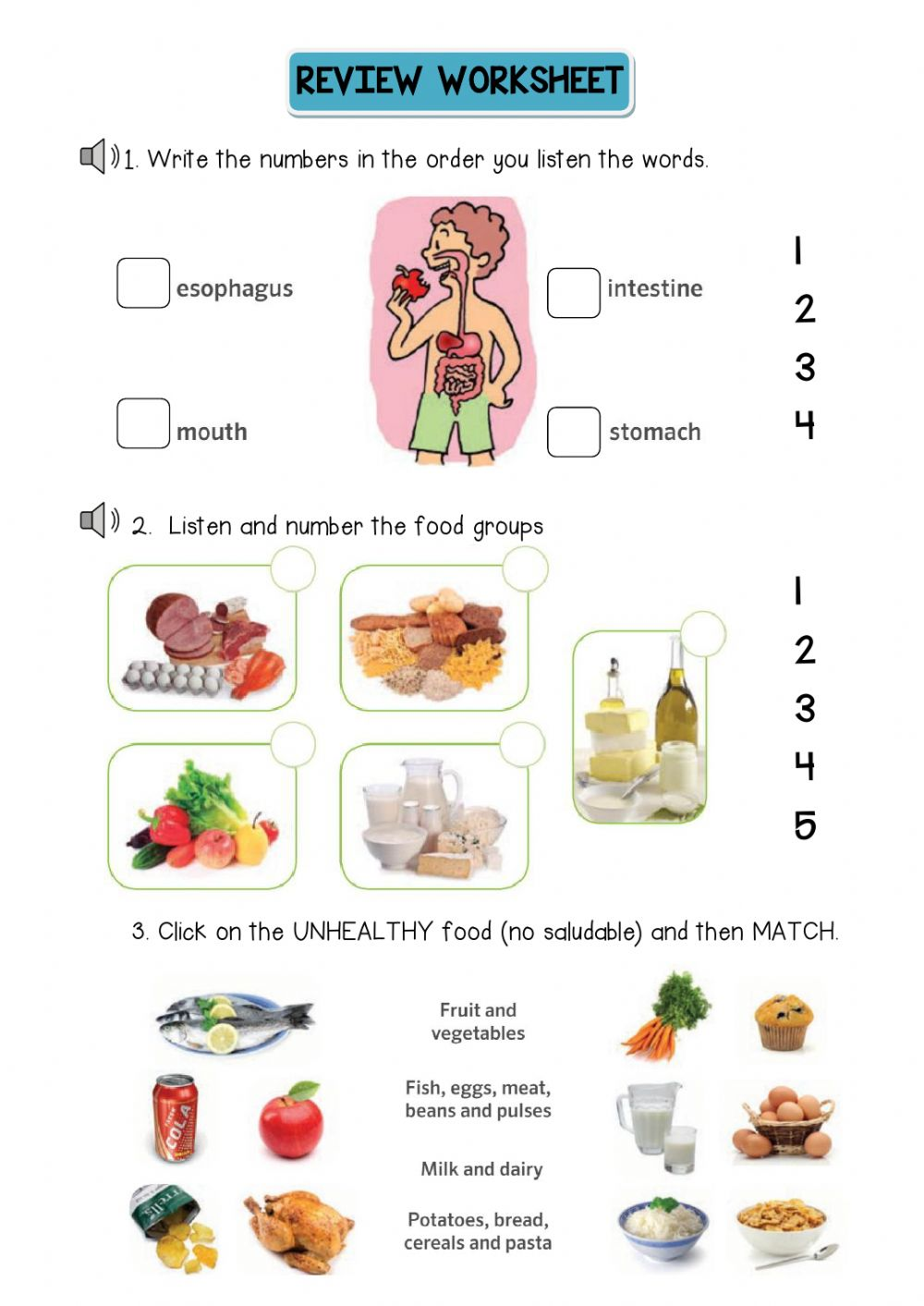 medium resolution of Food groups Review Activity worksheet