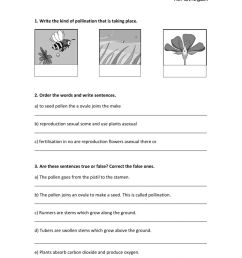 THE PLANT KINGDOM. SEXUAL AND ASEXUAL REPRODUCTION. worksheet [ 1413 x 1000 Pixel ]