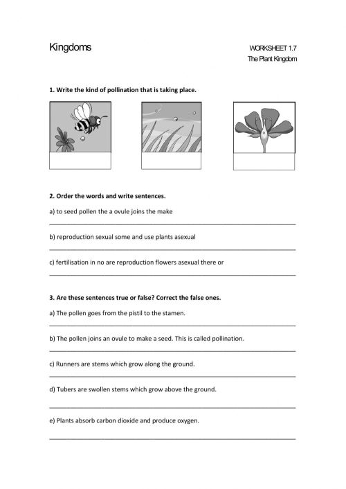 small resolution of THE PLANT KINGDOM. SEXUAL AND ASEXUAL REPRODUCTION. worksheet