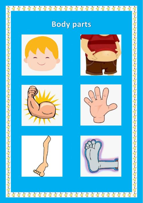 small resolution of Body parts online exercise for Grade 1