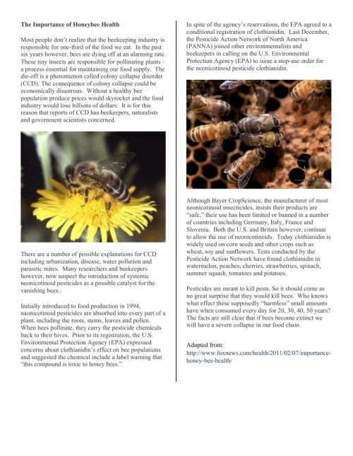 small resolution of Honey Bee Reading worksheet