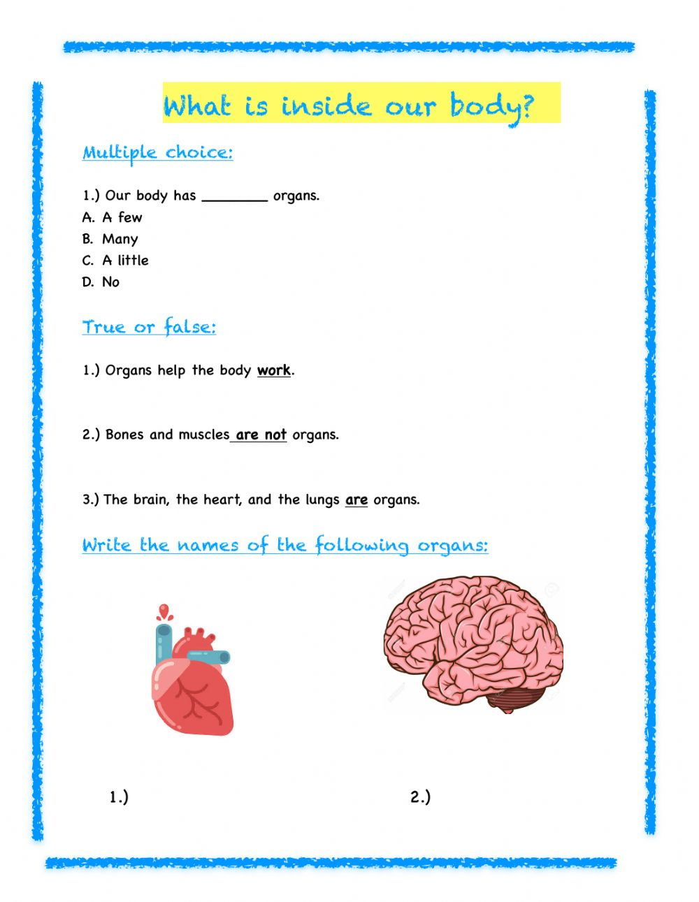 hight resolution of 3rd Grade Science Review worksheet