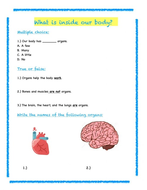 small resolution of 3rd Grade Science Review worksheet