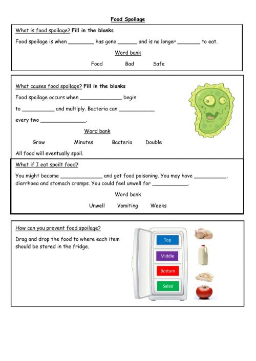 small resolution of Food Spoilage worksheet