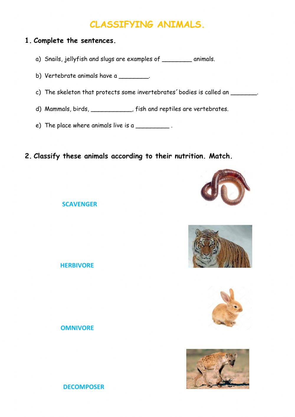 hight resolution of Classifying Animals worksheet