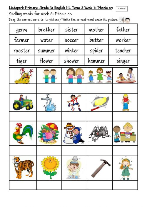 small resolution of Grade 3 Term 2 Week 7 English Phonic er Tuesday worksheet