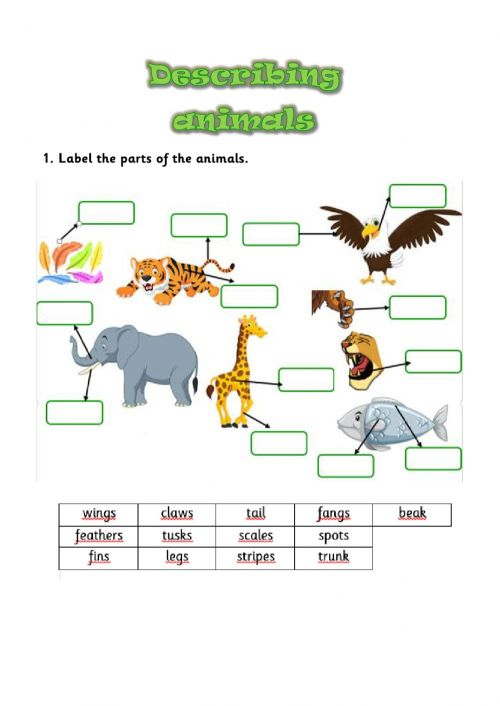 small resolution of Describing animals interactive activity for GRADES 2 AND 3
