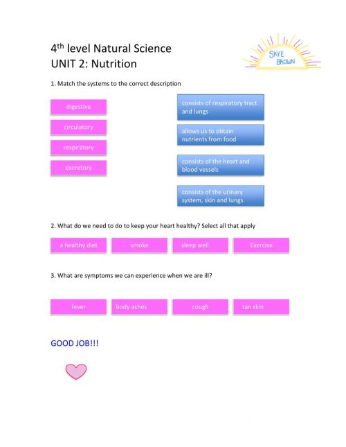 small resolution of 4th Level Social Science Unit 2 worksheet