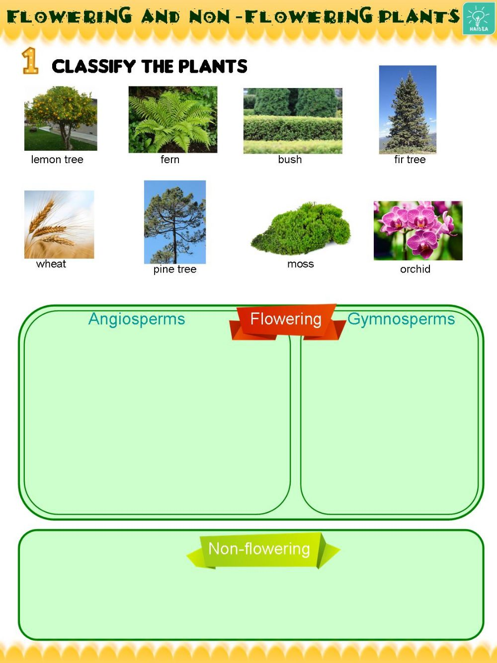 hight resolution of Flowering and non-flowering plants interactive worksheet