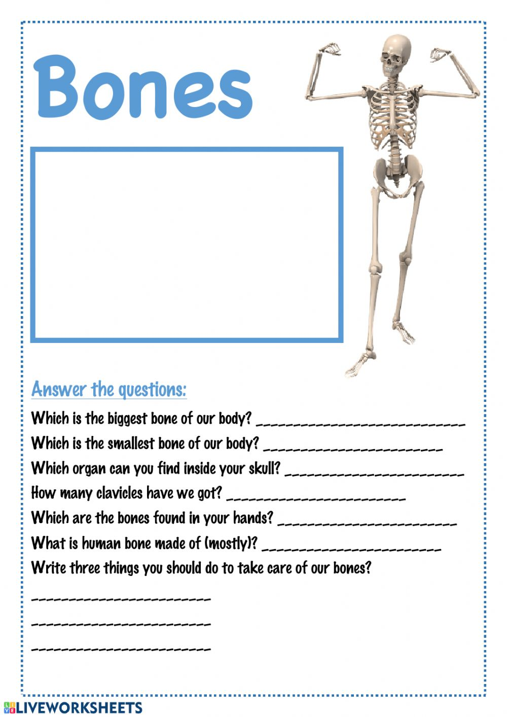 medium resolution of Bones interactive worksheet