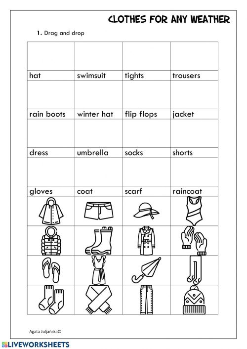 small resolution of Clothes fo any weather worksheet