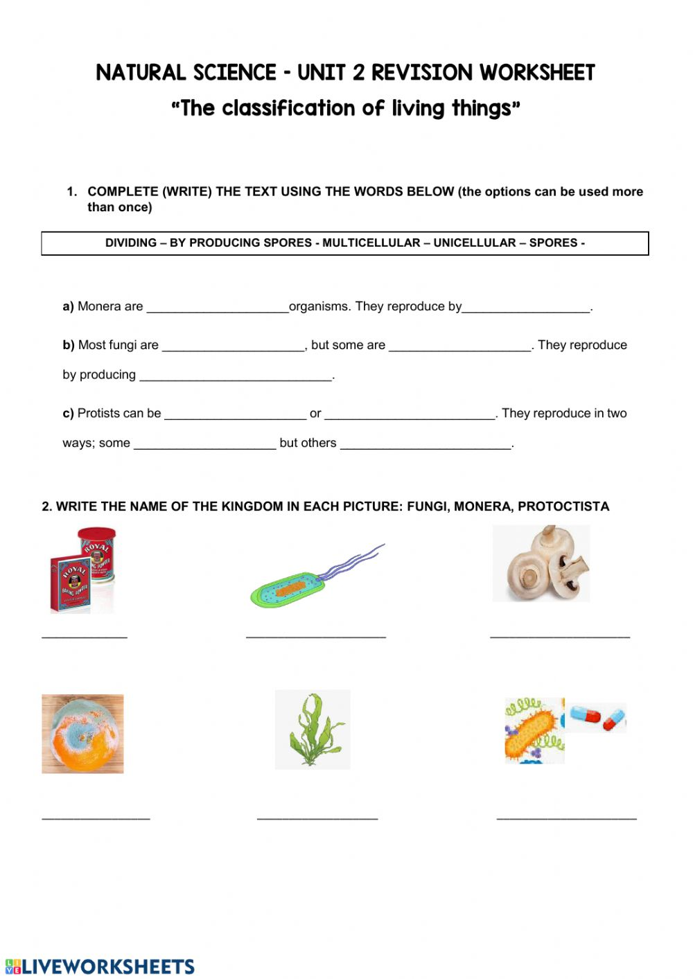 medium resolution of 5º The classification of living things - Unit 2 worksheet