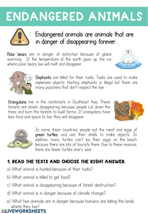 small resolution of Endangered Animals interactive exercise