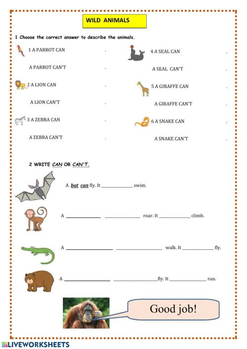 small resolution of Wild animals worksheet for Grade2