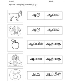 Get Tamil Worksheet For Grade 6 Pics – Tunnel To Viaduct Run [ 1291 x 1000 Pixel ]