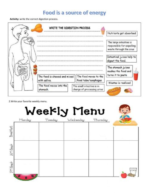 small resolution of Food groups online worksheet for grade 4