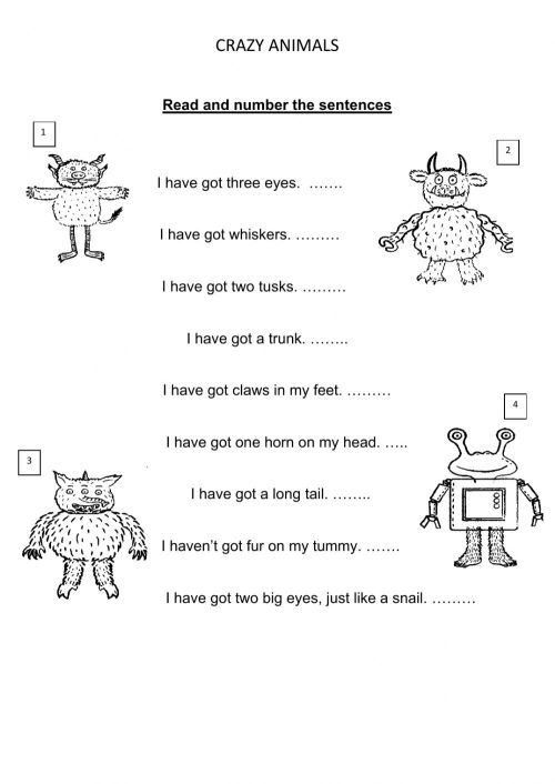 small resolution of Crazy animals worksheet