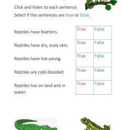 Reptiles interactive exercise for 1st-2nd year infants [ 1291 x 1000 Pixel ]