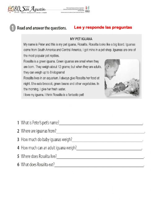 small resolution of Reading review fifth grade worksheet