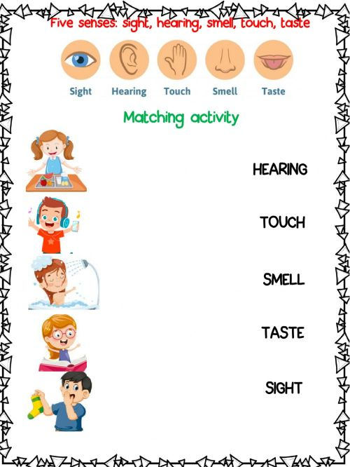 small resolution of Five senses free activity