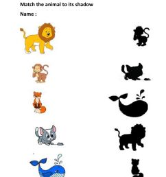 Match the animal to shadow worksheet [ 1413 x 1000 Pixel ]