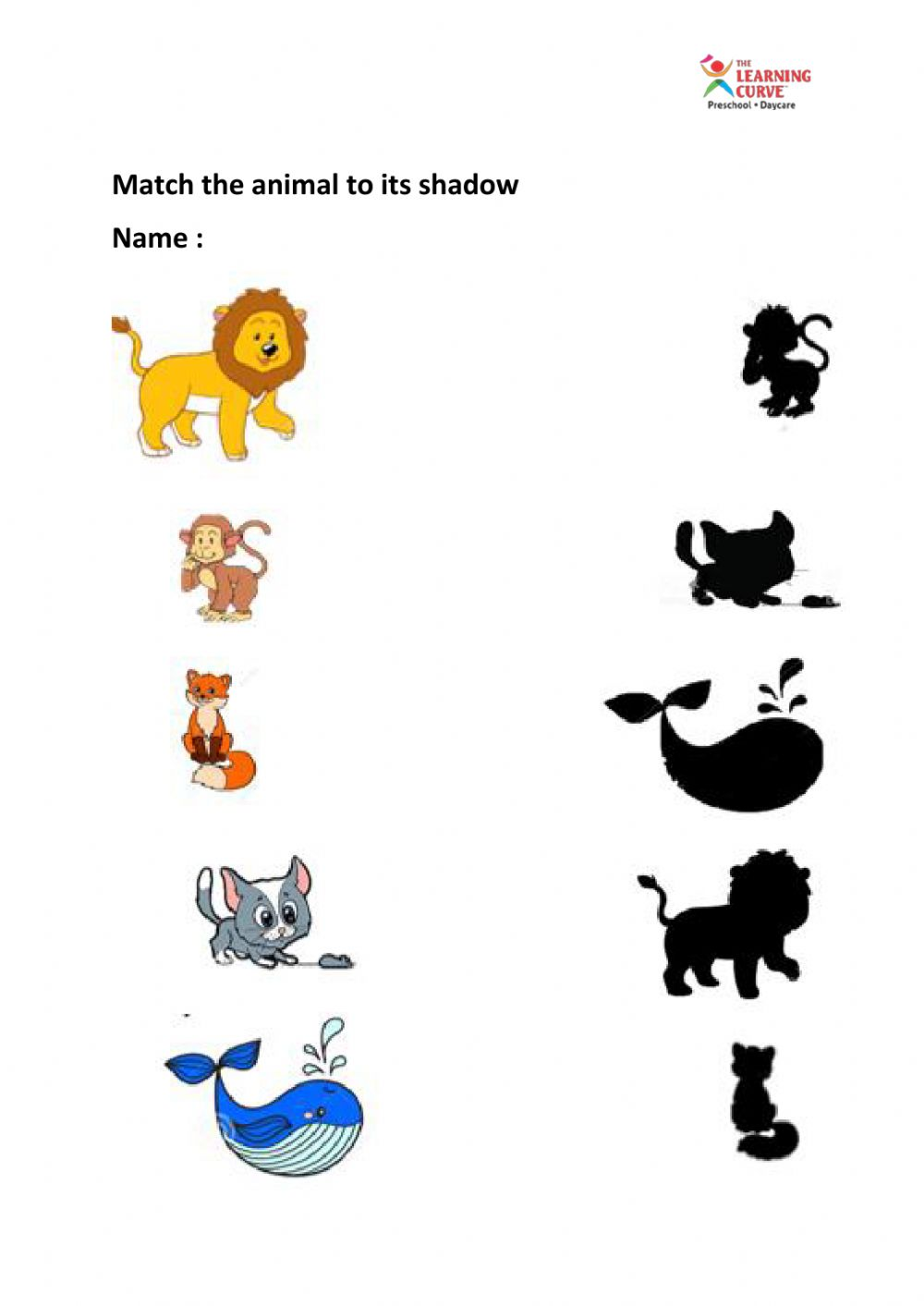 hight resolution of Match the animal to shadow worksheet