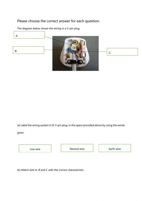 small resolution of Electricity and Magnetism interactive worksheet