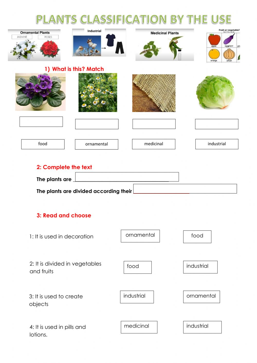 hight resolution of Plants Use Classification worksheet