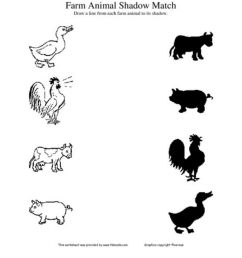 Match the animal with its shadow worksheet [ 1293 x 1000 Pixel ]