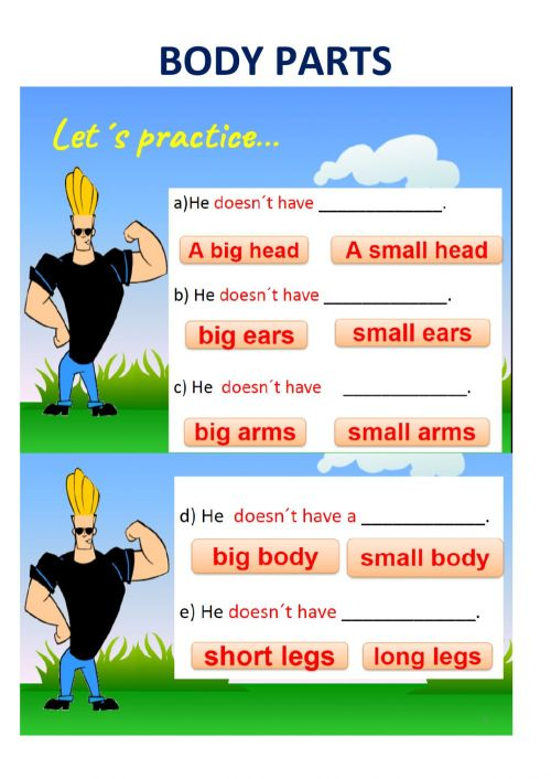 small resolution of Body parts- 2nd grade worksheet