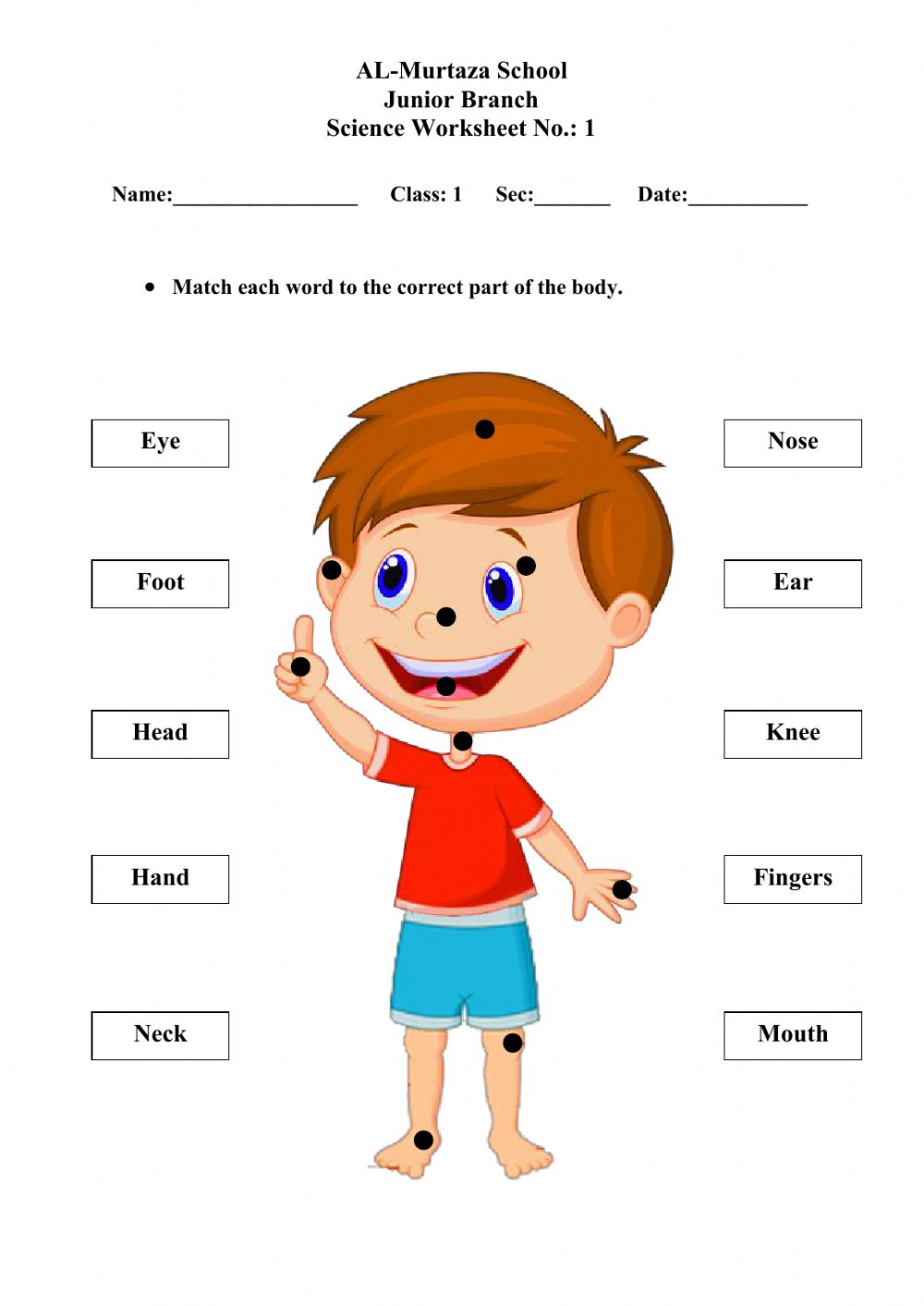 medium resolution of Body Parts online exercise for 1