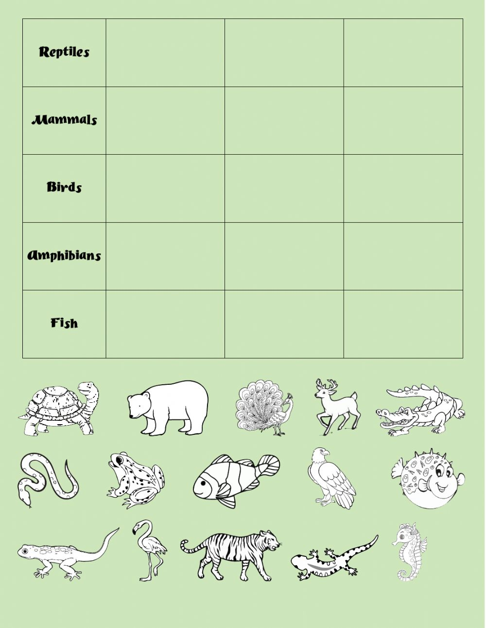 medium resolution of Animal groups