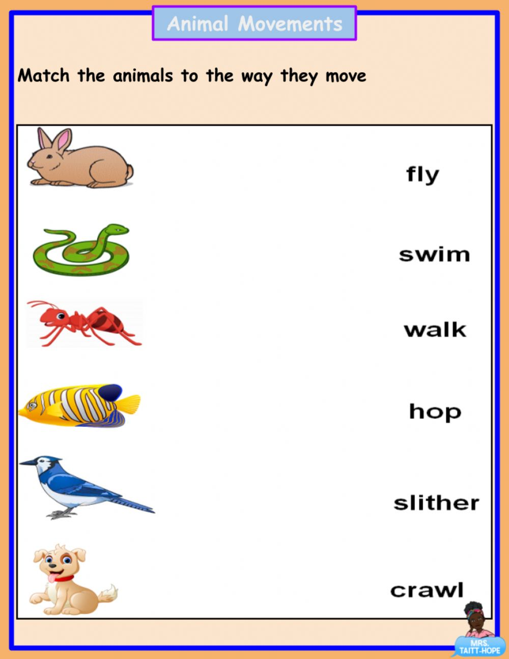 hight resolution of Animal Movements activity