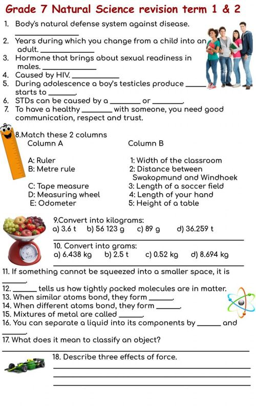small resolution of Grade 7 Revision term 1 \u0026 2 activity