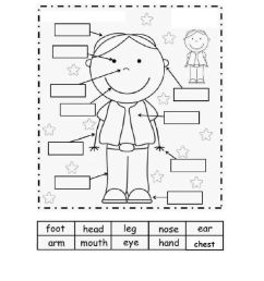 Body Parts online exercise for 1 st grade [ 1413 x 1000 Pixel ]
