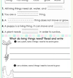 Living and non-living things online worksheet for First grade [ 1291 x 1000 Pixel ]