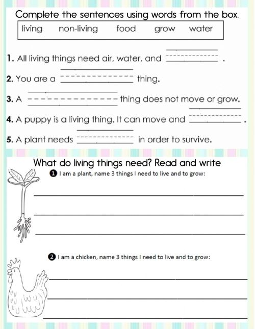 small resolution of Living and non-living things online worksheet for First grade