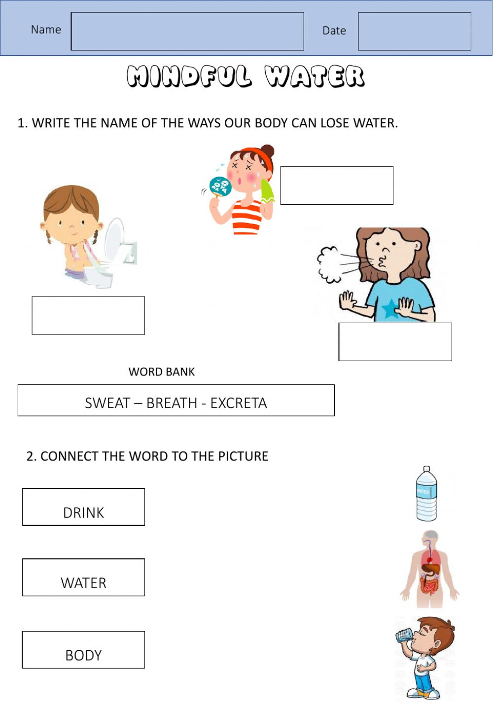 medium resolution of Water to the body worksheet