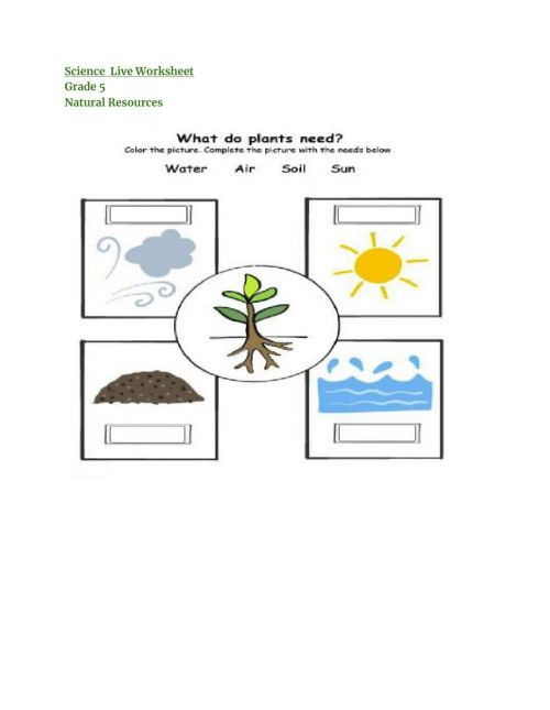 small resolution of Natural resources online activity
