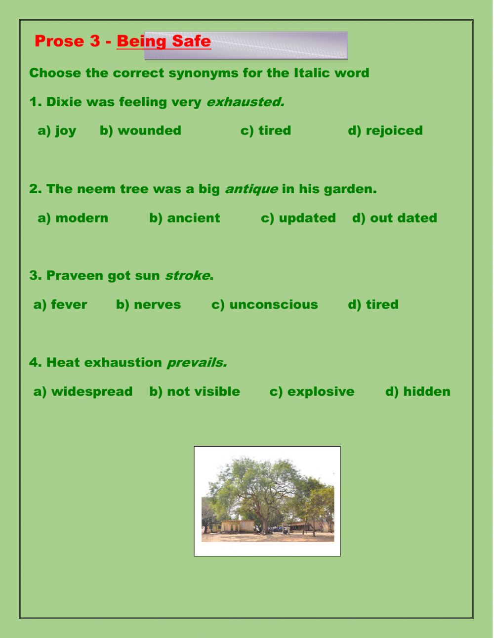 hight resolution of Synonyms and Antonyms interactive activity