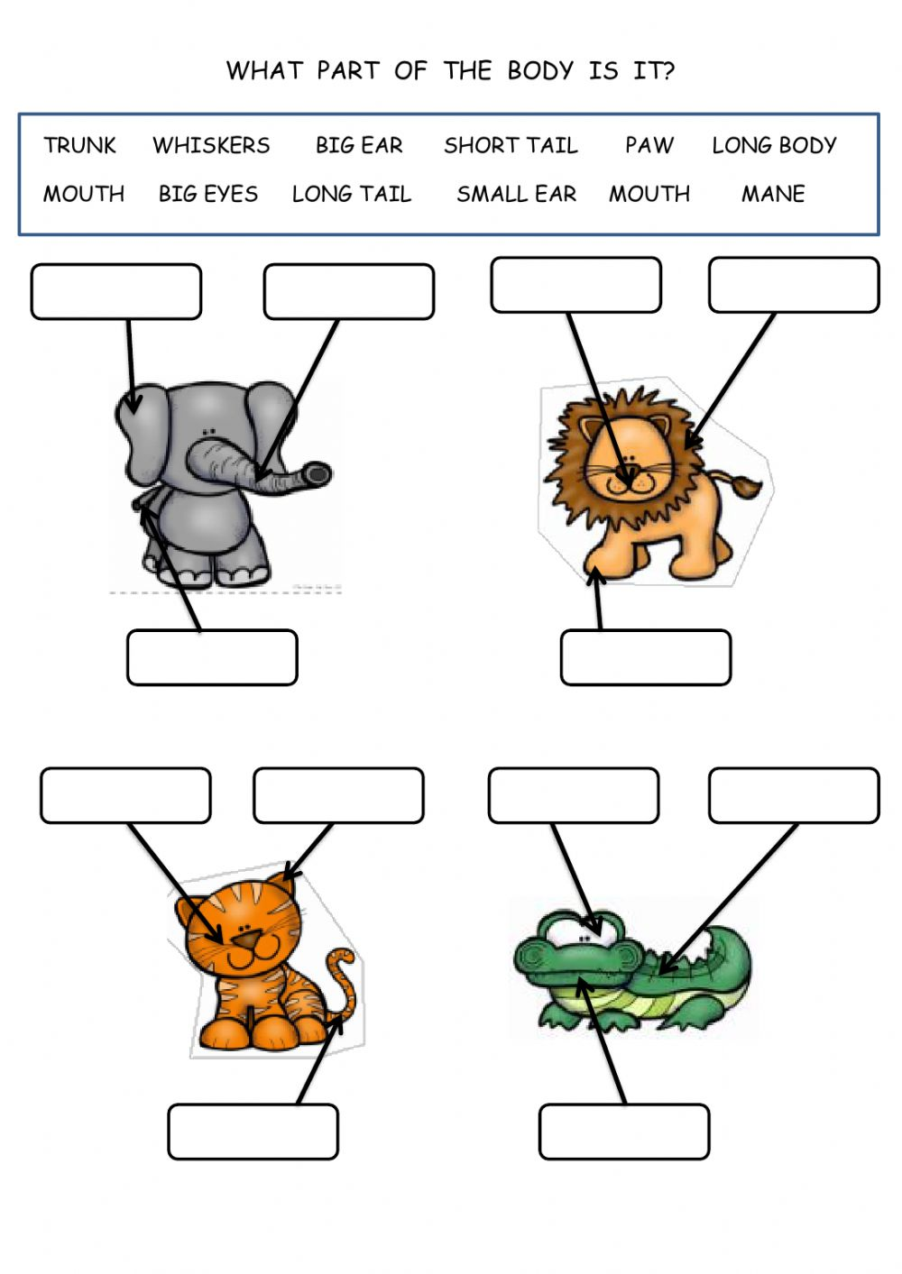 hight resolution of Animal body parts activity for grade 1