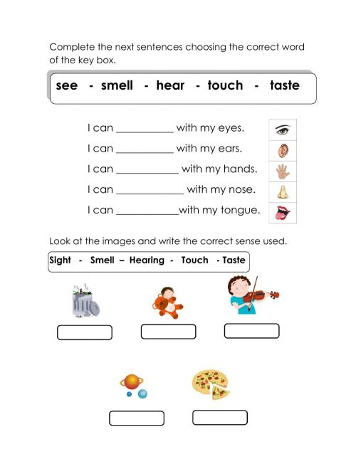 small resolution of The five senses 1 worksheet