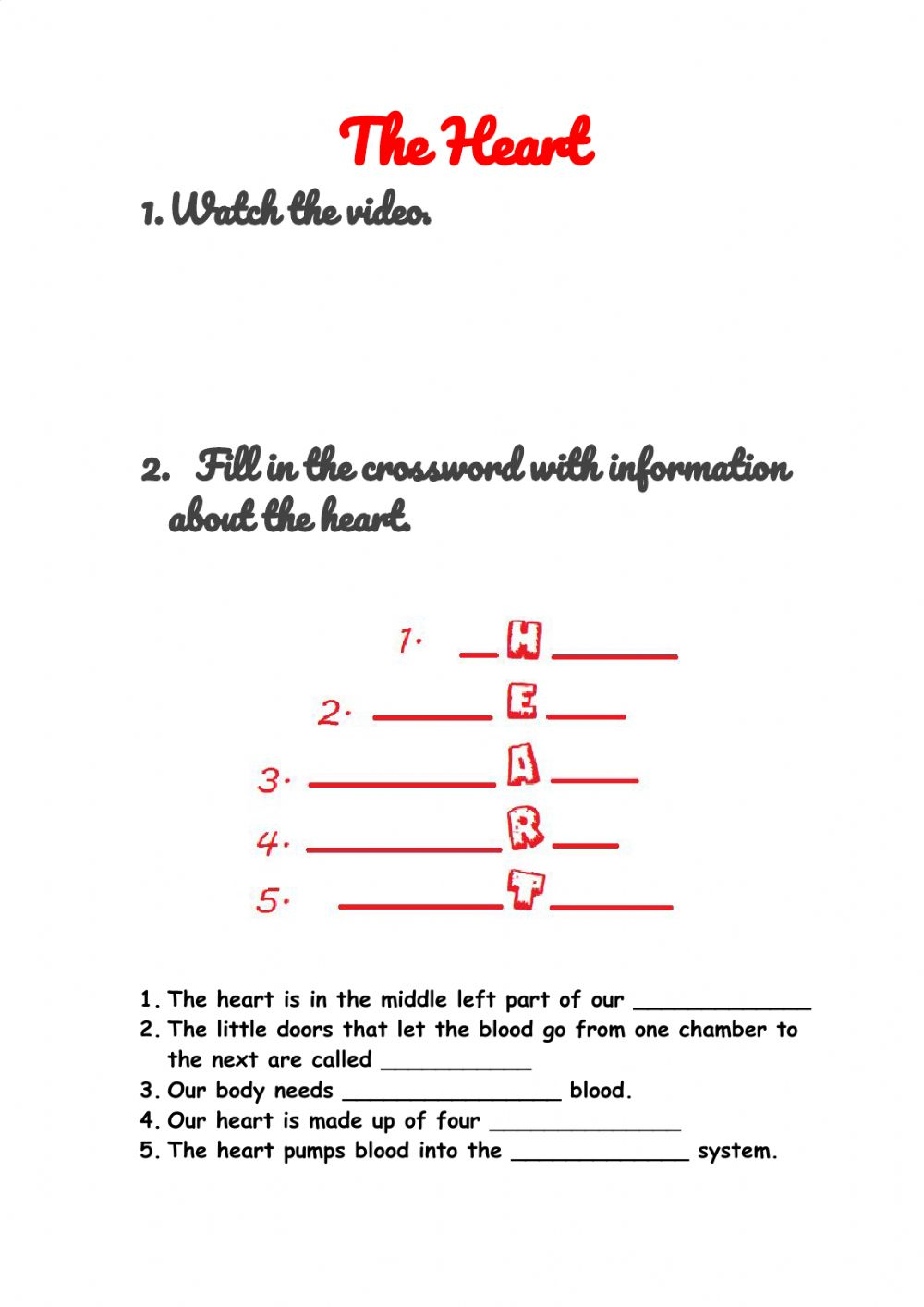 hight resolution of The heart interactive worksheet
